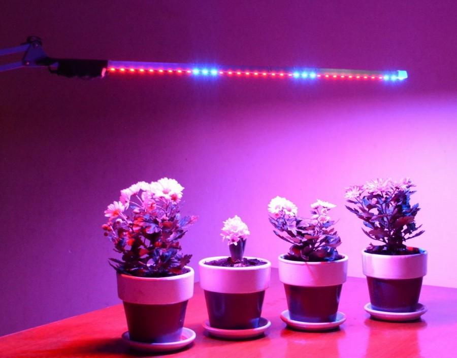 Лампы для досветки рассады 95