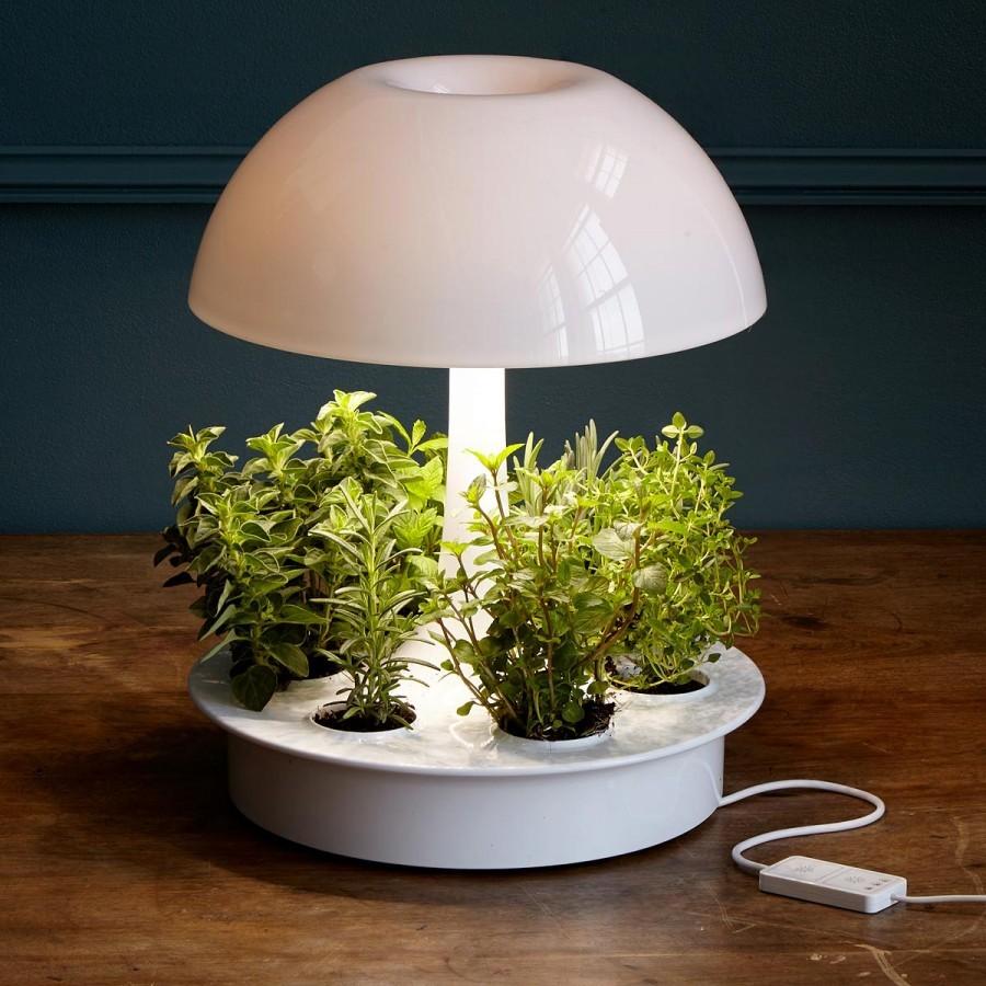 Лампы для растений: 95 фото подбора лучших приборов для цветов